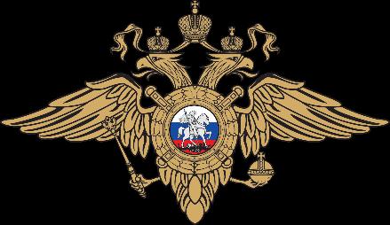 Центр оперативного реагирования и специальных мероприятий в области обеспечения безопасности дорожного движения МВД РФ